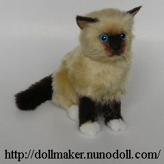 ragdoll kitten how to make ragdoll cat 500x600