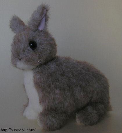 ウサギの画像 p1_20